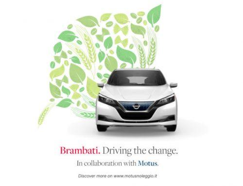 Auto aziendali a noleggio: una scelta ecologica